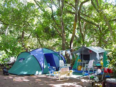 zinkwazi lagoon lodge campsite